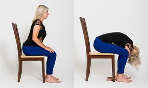 how to perform a seated forward fold in chair yoga